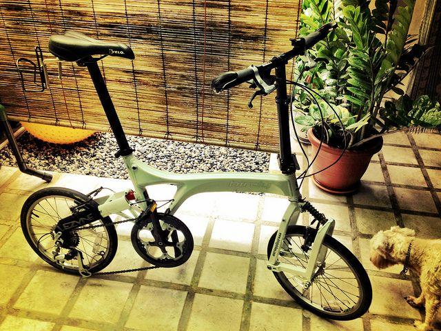 Rower z amortyzacją czy bez